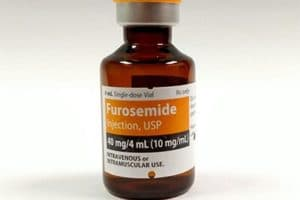 furosemide injection, usp 40 mg/4ml and it's potential for abuse